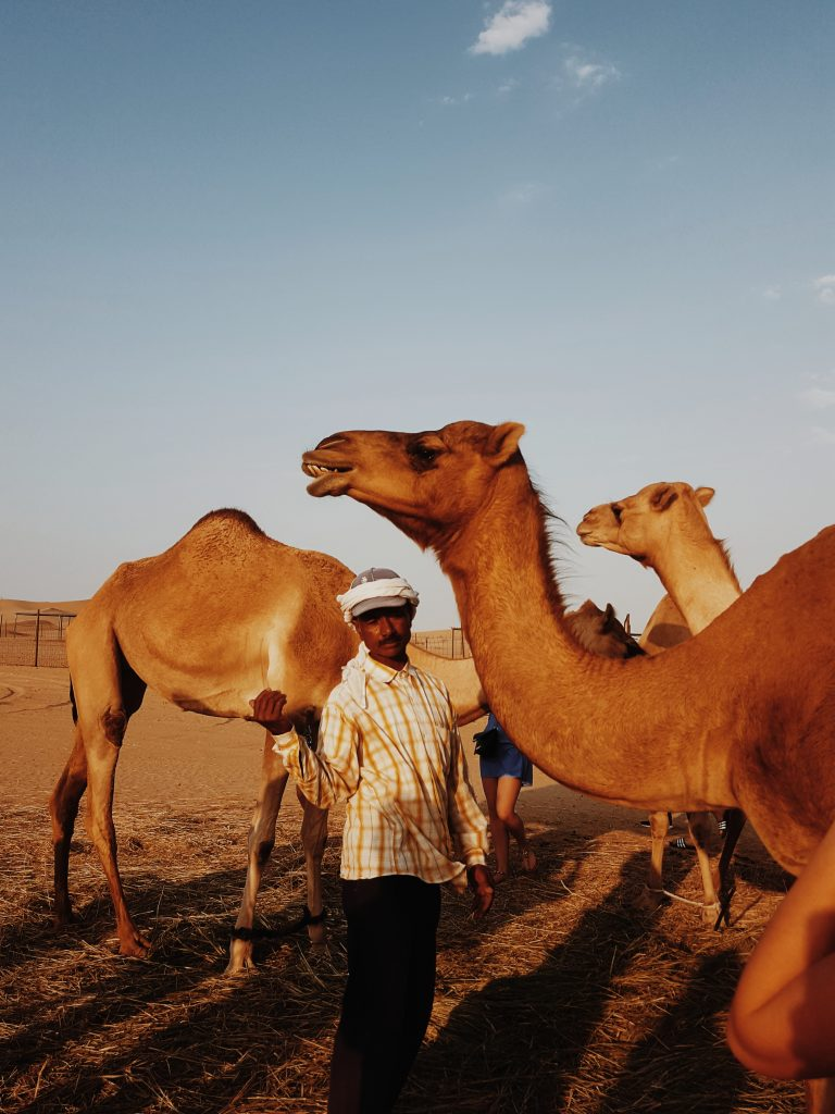 Puščava Al Khatim